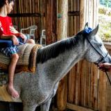 Equoterapia para crianças